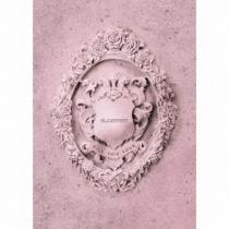 BLACKPINK - Kill This Love -JP Ver.- Pink Ver. LTD