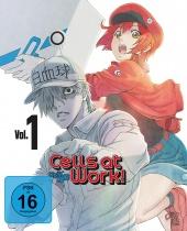 Cells at Work Vol.1 DVD+BD