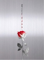 B.A.P - Single Album Vol.6 - Rose (A Version) (KR)