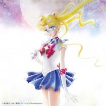 Sailor Moon The 20th Anniversary Memorial Tribute