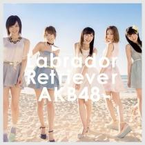 AKB48 - Labrador Retriever Type A