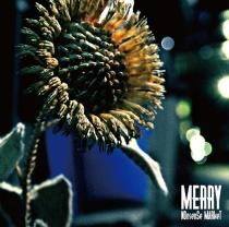 Merry - NOnsenSe MARkeT
